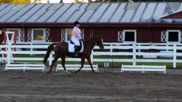 coastaldressageshow